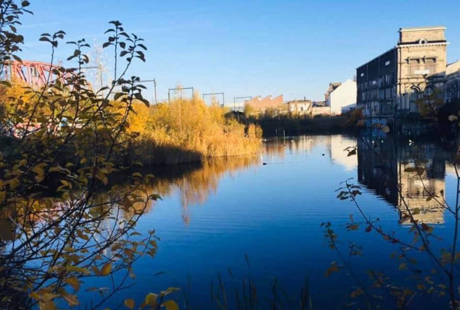 Le Gouvernement bruxellois va acquérir les terrains du «Marais Wiels» et le bâtiment du «Métropole»